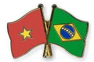 30 năm quan hệ kinh tế - thương mại Việt Nam Bra-xin