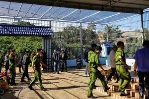 Bạch Đình Kế, kẻ cầm đầu vụ 'đầu độc' 10ha rừng thông bị bắt