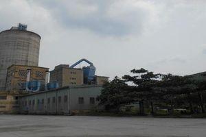 Cục Đường thủy nội địa Việt Nam tăng cường kiểm tra môi trường cảng, bến