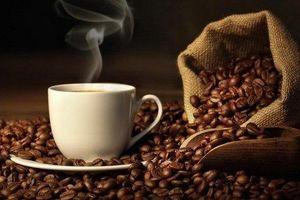 Giá cà phê hôm nay 3/6: Cao nhất tại Gia Lai