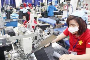 Phát hiện hơn 7.000 lao động chưa đóng, bị đóng thiếu BHXH, BHYT