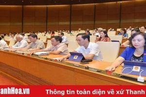 Quốc hội thảo luận về dự kiến Chương trình giám sát của Quốc hội