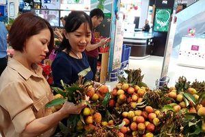 500 tấn vải thiều Lục Ngạn có mặt tại chuỗi bán lẻ Saigon Co.op