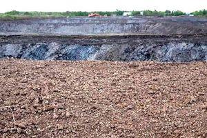 Vụ người dân phá rừng nuôi tôm ở Cà Mau: Xã nói có vi phạm, huyện bảo không
