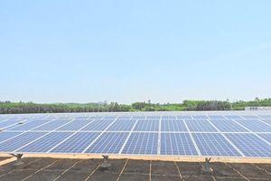Quảng Ngãi: Vận hành Nhà máy Điện mặt trời Bình Nguyên