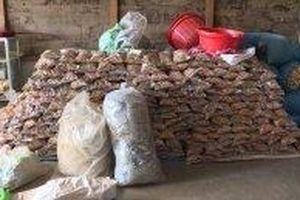 Phát hiện tiêu hủy trên bốn tấn thuốc Amakông không rõ nguồn gốc, xuất xứ