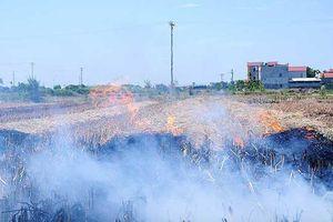 Vì sao không khí ở Sóc Sơn, Ba Vì ô nhiễm hơn nội đô Hà Nội?
