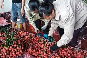 Loạt doanh nghiệp lớn thúc xuất khẩu nông sản sang Trung Quốc