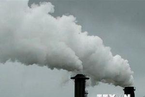 Các doanh nghiệp có thể tổn thất 1.000 tỷ USD do biến đổi khí hậu