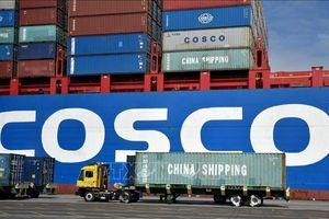 Đại biện lâm thời Đại sứ quán Trung Quốc tại Việt Nam: Trung Quốc không muốn va chạm thương mại với Mỹ leo thang