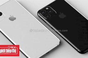 Người dùng háo hức mong chờ iPhone 5G hơn các mẫu iPhone 2019