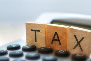 Hộ kinh doanh phải nộp những loại thuế nào?