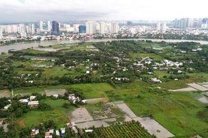 Chủ tịch Nguyễn Thành Phong muốn tái khởi động siêu dự án Bình Quới - Thanh Đa