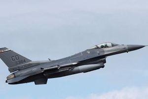 Bulgaria 'chê ỏng chê eo' chiến đấu cơ F-16 của Mỹ