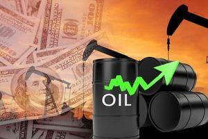 Giá dầu thế giới 5/6: Đồng loạt tăng nhẹ