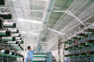 Doanh nghiệp trong nước gia tăng xuất khẩu: Tín hiệu đáng mừng