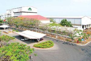 Thành Thành Công Biên Hòa tái khởi động chương trình cổ phiếu ưu đãi cổ tức