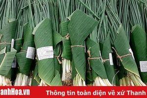 Từ mô hình sử dụng lá chuối gói bọc thực phẩm đến thương mại xanh