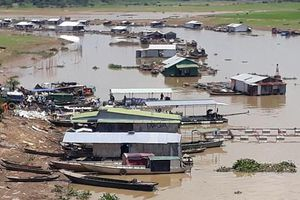 1.000 tấn cá chết ở Đồng Nai: Nguồn nước sạch của TP.HCM có bị ảnh hưởng?