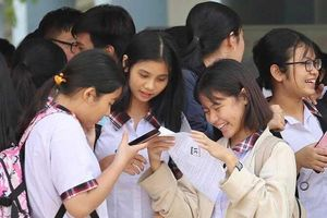 Thi lại văn lớp 10: Học sinh Quảng Bình gánh lỗi của người lớn