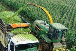 Bất động sản nông nghiệp: Cơ hội cho thị trường còn đang bỏ ngỏ