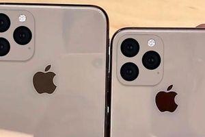Đây là hình ảnh khẳng định iPhone 11 và 11 Max có camera sau quá 'dị'