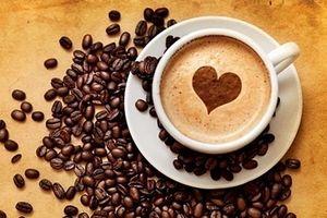 Giá cà phê bất ngờ giảm mạnh tới 1400 đồng/kg