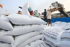 Xuất khẩu gạo 5 tháng đầu năm mang về 1,21 tỷ USD