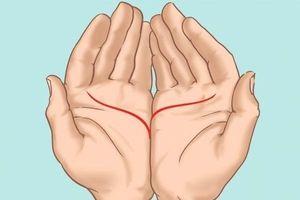 Đặt 2 bàn tay cạnh nhau, biết ngay đường tình duyên lận đận hay thuận lợi