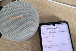 Thiết bị nhà thông minh Google Home lại giảm giá 'chờ đợi' trợ lý tiếng Việt