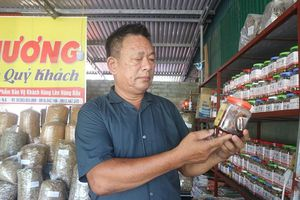 Làng nghề hải sản khô, 'đại sứ' du lịch Cửa Lò