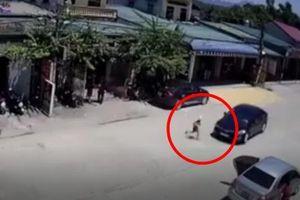 CLIP HÃI HÙNG: Cậu bé tung tăng chạy theo mẹ qua đường và 3 giây sau khiến cả nhà 'chết lặng'