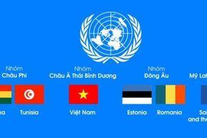 Việt Nam tranh cử vào Hội đồng Bảo an Liên hợp quốc