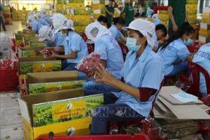 Nhân rộng các điểm bán hàng Việt phục vụ người tiêu dùng