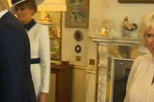 Không xinh đẹp lộng lẫy như mẹ kế con chồng nhà Trump nhưng vợ Thái tử Charles lại 'nổi như cồn' vì việc này