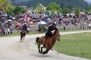 Sôi động, hấp dẫn vòng loại Giải Đua 'Vó ngựa cao nguyên trắng' Bắc Hà 2019