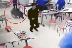Lợn rừng lao vào canteen giữa giờ ăn, đám đông bỏ chạy tán loạn