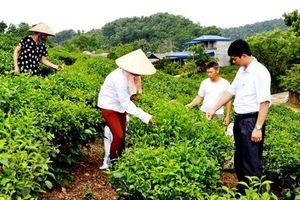 Đổi mới trong công tác dân vận chính quyền ở Thái Nguyên