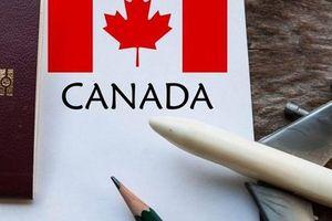 Hàng trăm hồ sơ xin hưởng thuế suất ưu đãi vào Canada