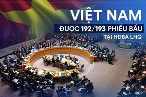 Cộng đồng quốc tế tin tưởng vào vị thế, vai trò và uy tín của Việt Nam tại LHQ