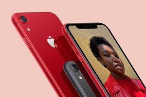 Tội phạm lừa đảo đánh cắp số lượng lớn iPhone trị giá 19 triệu USD trên toàn nước Mỹ