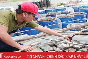 Hà Tĩnh hỗ trợ hơn 39 tỷ đồng đầu tư hạ tầng, trang thiết bị cho HTX