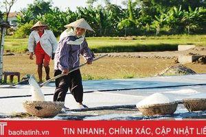 Diêm dân Hà Tĩnh: Trời càng nắng, đồng muối càng bội thu