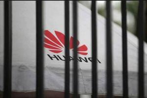 Trung Quốc cảnh báo hậu quả thảm khốc nếu các công ty hùa theo lệnh cấm từ Mỹ