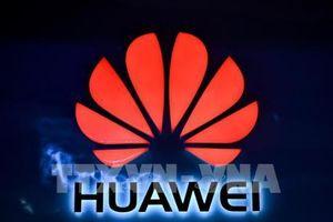 Mỹ có thể nới lỏng lệnh cấm Huawei nếu đàm phán thương mại có tiến triển