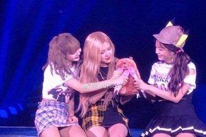 Concert BlackPink tại Macao: Sức khỏe báo động, Jennie buộc phải rời sân khấu giữa concert, không tham gia biểu diễn encore