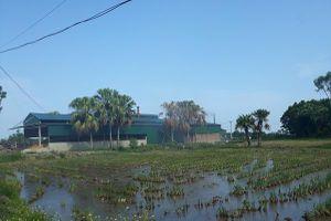 Quảng Xương (Thanh Hóa): Xưởng sản xuất than xây dựng trái phép trên đất nông nghiệp