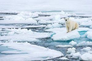 Mỹ 'lo sốt vó' việc Nga và Trung Quốc tăng cường hiện diện ở Bắc Cực