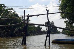 Những chiếc 'cầu khỉ' ở thị xã được xem là giàu nhất tỉnh Bạc Liêu