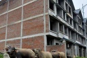 Bộ Xây dựng nhận trách nhiệm về tình trạng 'khu đô thị nhiều không'